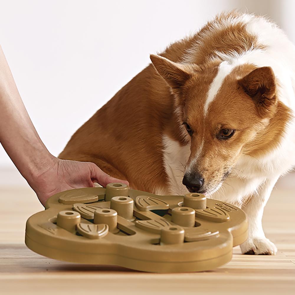 Nina Ottosson Dog Toys Shop - DOG HIDE N`SLIDE - COMPOSITE ...