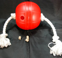 Dog T-ball. Treat toy with a rope. Grado di difficoltá 2