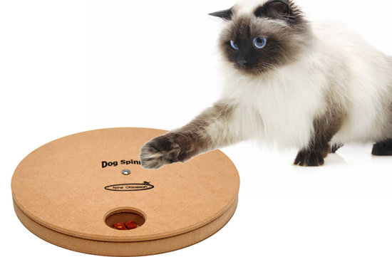 Dog/Cat Spinny holz. Schwierigkeitsgrade 1, Eco-Friendly material