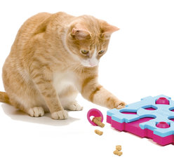 Cat MixMax Puzzle B. Vaikeusastetta 2